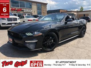 Used 2019 Ford Mustang EcoBoost Premium Convertible for sale in St Catharines, ON