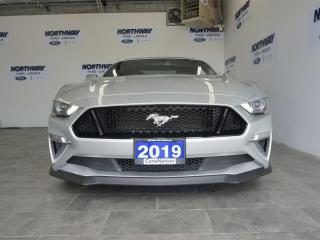 Used 2019 Ford Mustang GT PREMIUM | PERFORMANCE PKG | OVER 62K NEW!! for sale in Brantford, ON
