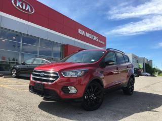Used 2019 Ford Escape Titanium for sale in Calgary, AB