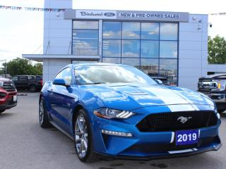 Used 2019 Ford Mustang GT Premium 401A | NAV | 20'S | 10-SPEED AUTO for sale in Winnipeg, MB