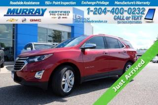 Used 2018 Chevrolet Equinox *Heated & Cooled Leather Seats* Surround Vison Cam for sale in Brandon, MB