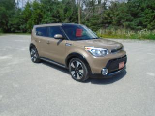 Used 2016 Kia Soul SX URBAN EDITION LEATHER / PANORAMIC ROOF for sale in Beaverton, ON