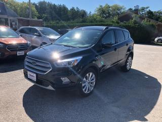 Used 2019 Ford Escape SEL for sale in Flesherton, ON