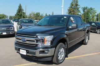 New 2020 Ford F-150 XLT 300A 4X4 SuperCrew 2.7L Ecoboost with Auto Start/Stop, Pre-Collision Assist, Rear View Camera, and Remote Keyless Entry for sale in Edmonton, AB