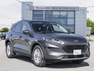 New 2020 Ford Escape SE PANO ROOF | BLIS | HEATED SEATS for sale in Winnipeg, MB