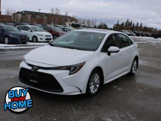 Used 2020 Toyota Corolla LE   - Sunroof - Safety Sense - $134 B/W for sale in Selkirk, MB