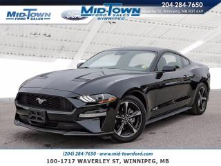Used 2019 Ford Mustang EcoBoost for sale in Winnipeg, MB