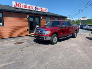 Used 2014 Ford F-150 XLT for sale in Millbrook, NS