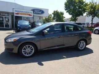 Used 2016 Ford Focus for sale in Mississauga, ON