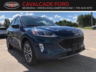 New 2020 Ford Escape SEL for sale in Bracebridge, ON