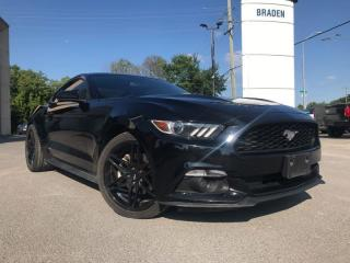 Used 2016 Ford Mustang V6 for sale in Kingston, ON