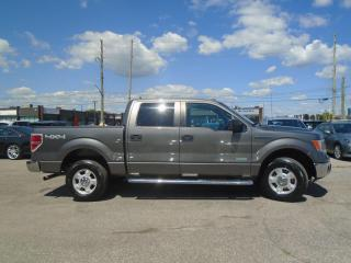 Used 2014 Ford F-150 4WD 4DR SuperCrew 145
