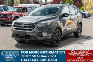 Used 2019 Ford Escape Titanium TITANIUM/ROOF/NAV for sale in Okotoks, AB