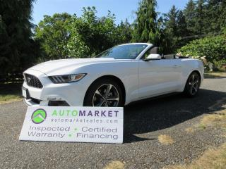 Used 2017 Ford Mustang LOCAL, NO ACCIDENTS, V6, PRISTINE, INSP, BCAA MBSHP, WARR, FINANCE! for sale in Surrey, BC