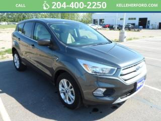 Used 2017 Ford Escape SE for sale in Brandon, MB