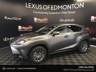 New 2020 Lexus NX 300 Standard Package for sale in Edmonton, AB