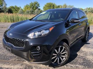 Used 2019 Kia Sportage EX AWD for sale in Cayuga, ON