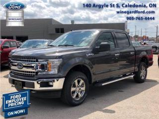 New 2020 Ford F-150 for sale in Caledonia, ON