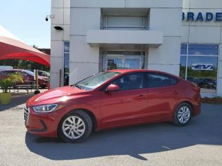 Used 2017 Hyundai Elantra SE for sale in Kingston, ON