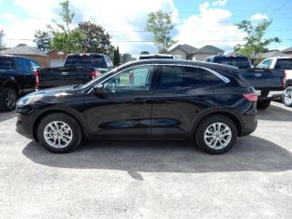 New 2020 Ford Escape SE for sale in Peterborough, ON
