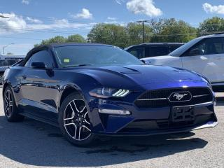 Used 2019 Ford Mustang EcoBoost Premium HEATED LEATHER SEATS, NAVIGATION for sale in Midland, ON