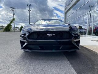 Used 2019 Ford Mustang EcoBoost Convertible Manuelle 100A for sale in St-Eustache, QC