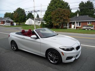 Used 2018 BMW 2 Series 230i xDrive Cabriolet for sale in Ste-Marie, QC