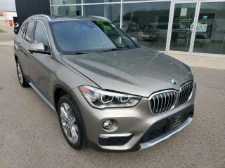 Used 2019 BMW X1 xDrive28i Panoramic Sunroof, Navigation, Heated Seats! for sale in Ingersoll, ON