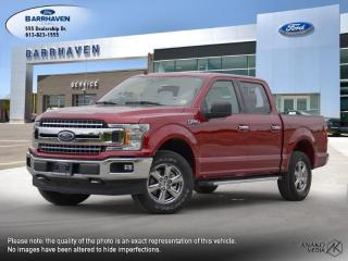 Used 2019 Ford F-150 XLT for sale in Ottawa, ON