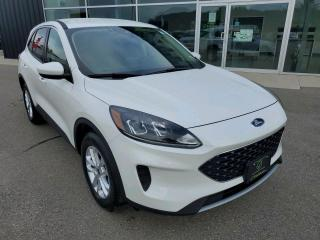 Used 2020 Ford Escape SE Apple CarPlay, Heated Seats, Backup Cam! for sale in Ingersoll, ON