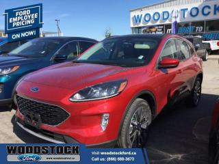 New 2020 Ford Escape SEL 4WD  - $260 B/W for sale in Woodstock, ON