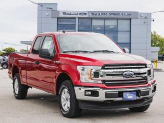 New 2020 Ford F-150 XLT REAR CAM | FORDPASS for sale in Winnipeg, MB