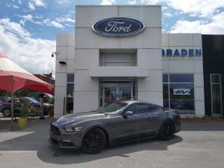 Used 2017 Ford Mustang GT for sale in Kingston, ON