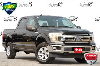 Used 2019 Ford F-150 XLT | 4X4 | 2.7L V6 ECOBOOST for sale in Kitchener, ON