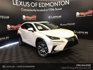 Used 2019 Lexus NX 300 PREMIUM PACKAGE PACKAGE for sale in Edmonton, AB