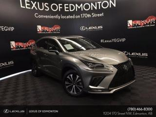 Used 2019 Lexus NX 300 F Sport Series 2 for sale in Edmonton, AB