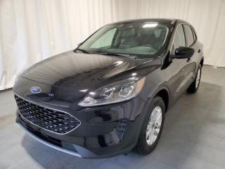 New 2020 Ford Escape SE for sale in Regina, SK