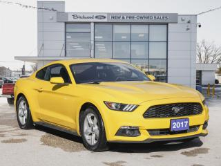 Used 2017 Ford Mustang V6 1 OWNER | LOW KM | BACK CAM for sale in Winnipeg, MB