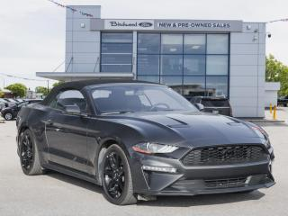 Used 2019 Ford Mustang EcoBoost Premium NAV | 10-SPEED AUTO for sale in Winnipeg, MB