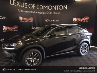 New 2021 Lexus NX 300 Luxury Package for sale in Edmonton, AB