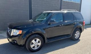 Used 2009 Ford Escape XLT for sale in Brunkild, MB