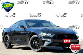Used 2018 Ford Mustang GT Premium GT | 5.0L V8 | BLACK APPEARANCE PACKAGE for sale in Kitchener, ON
