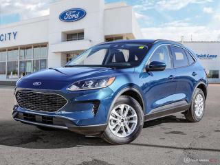 New 2020 Ford Escape SE for sale in Winnipeg, MB