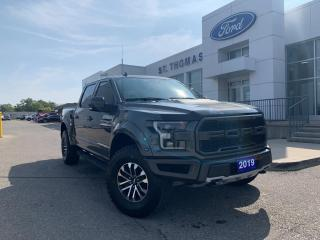 Used 2019 Ford F-150 Raptor 4x4/Leather/Navi/17 Wheels for sale in St Thomas, ON