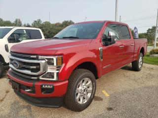 New 2020 Ford F-250 Super Duty SRW Platinum for sale in New Hamburg, ON