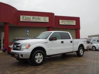 Used 2014 Ford F-150 XLT for sale in West Saint Paul, MB