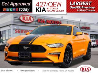 Used 2019 Ford Mustang EcoBoost Premium for sale in Etobicoke, ON