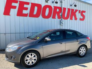Used 2014 Ford Focus SE for sale in Headingley, MB