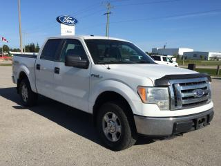 Used 2011 Ford F-150 XLT for sale in Harriston, ON