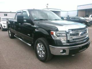 Used 2014 Ford F-150 XLT for sale in London, ON